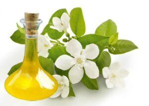neroli-essential-oil-1487243993-2727296
