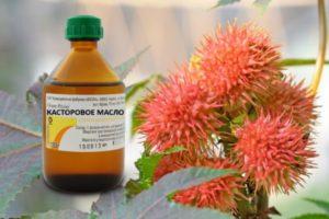 Касторовое масло - универсальное лекарство для кожи.