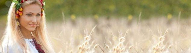 травы-обереги, которые растут рядом с нами